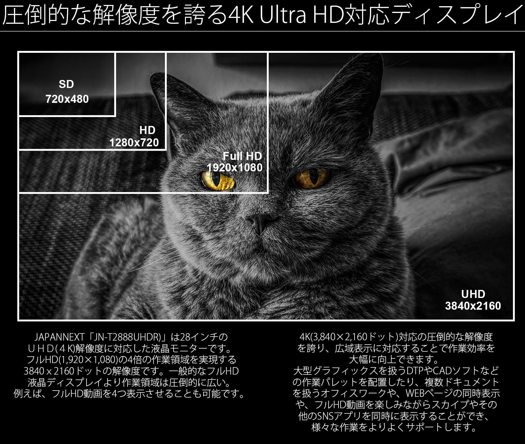 JAPANNEXT「JN-T284CUHDR」は28インチのUHD(4K)解像度に対応した液晶ディスプレイです。フルHD(1920×1080)の4倍の作業領域を実現する3840x2160ドットの解像度です。一般的なフルHD液晶ディスプレイより作業領域は圧倒的に広い。例えば、フルHD動画を同時に4つ表示可能です。4K(3840x2160ドット)対応の圧倒的な解像度を誇り、広域表示に対応することで作業効率を大幅に向上できます。大型グラフィックスを扱うDTPやCADソフトなどの作業パレットを配置したり、複数ドキュメントを扱うオフィスワークや、WEBページの同時表示や、フルHD動画を楽しみながらスカイプやその他のSNSアプリを同時に表示することができ、様々な作業をよりよくサポートします。